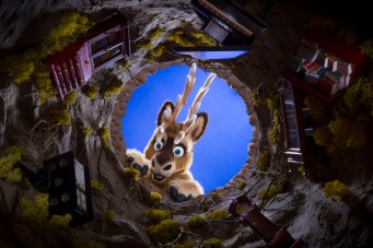 prancer-looking-down-the-rabbit-hole